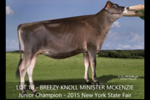 Heath's Newest Addition To The Herd Purchases At The 2015 World Dairy Expo